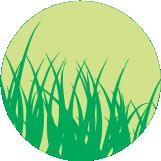 icono-verde-001