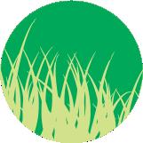icono-verde-002
